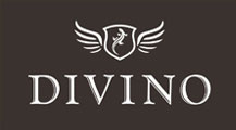 divino-logo-2015